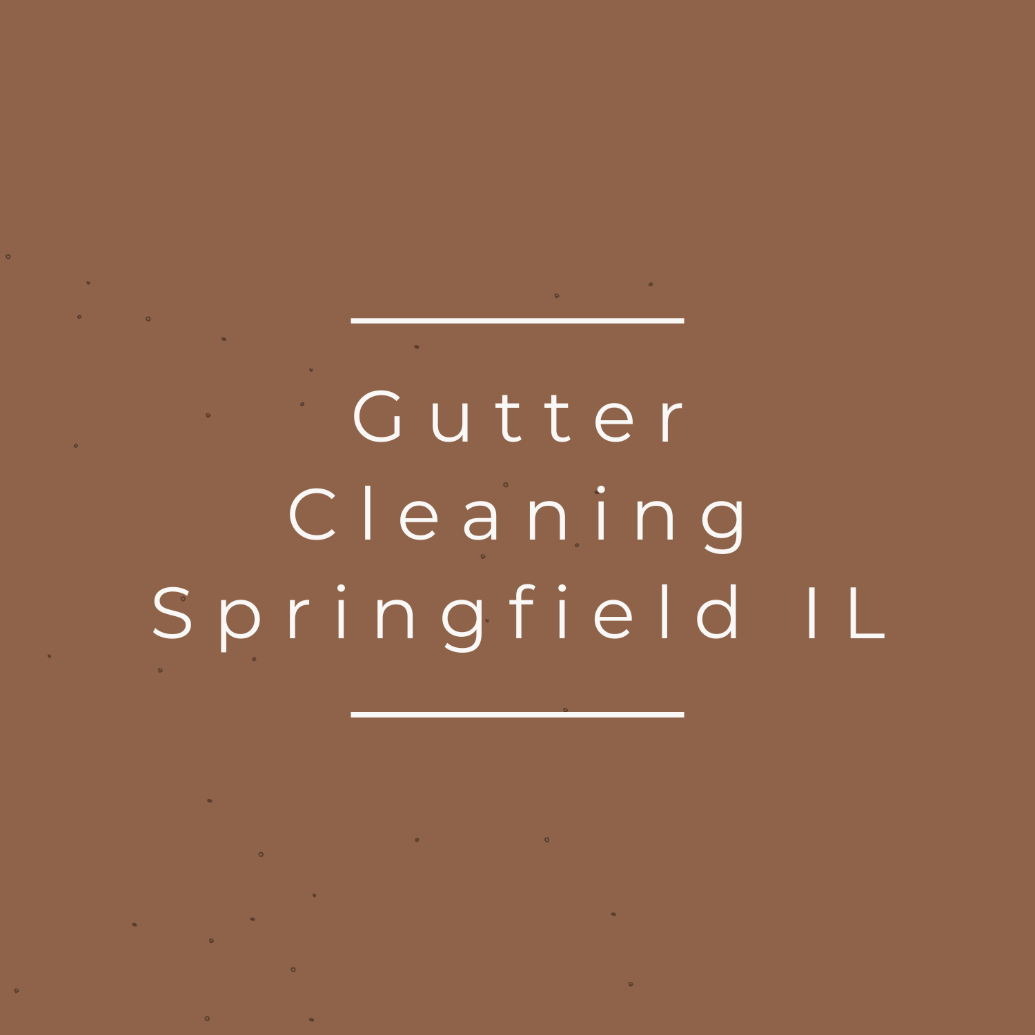 Gutter Cleaning Springfield IL